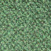 stainfree-tweed-forest-fern