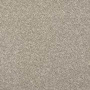 sumptuous-moods-643-grey