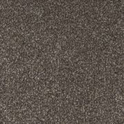 trident-highlights-584-macadamia