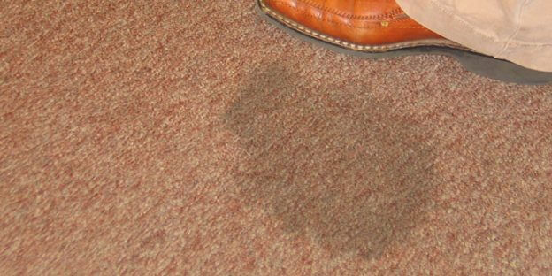 Clean Or Replace My Carpets When Moving Out